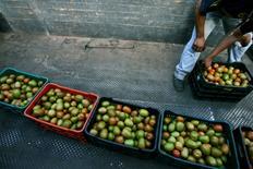 Imagen de archivo de un trabajado con unos cajones de tomates en Zacoalco de Torres, México, feb 4, 2013. La tasa de inflación interanual de México se moderó hasta marzo debido principalmente a un descenso en los precios de productos agropecuarios, así como en el de energéticos y tarifas autorizadas por el Gobierno, mostraron el jueves cifras oficiales.    REUTERS/Alejandro Acosta