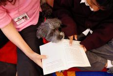 Marlon Maita, 8, reads with Leslie Hight, a therapy dog handler for New York Therapy Animals, and Izzy, a Reading Education Assistance Dog therapy dog, at Public School 57 in the Spanish Harlem section of New York, U.S., May 16, 2016. REUTERS/Shannon Stapleton
