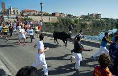 "Revellers run around a bull during the ""Toro de la Vega"" festival in Tordesillas, near Valladolid, September 11, 2012. REUTERS/Felix Ordonez"