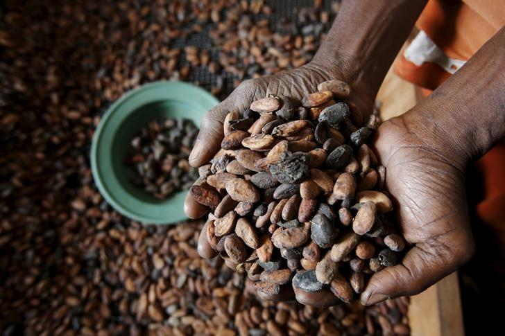Cargill projects global cocoa deficit for 2015/16, surplus in 2016/17