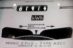 Ségolène Royal a annoncé mercredi l'entrée en vigueur le 1er août d'une baisse des tarifs de l'électricité proposé par la Commission de régulation de l'énergie (CRE), de 0,5% pour les tarifs résidentiels et de 1,5% pour les professionnels. /Photo d'archives/REUTERS/Regis Duvignau