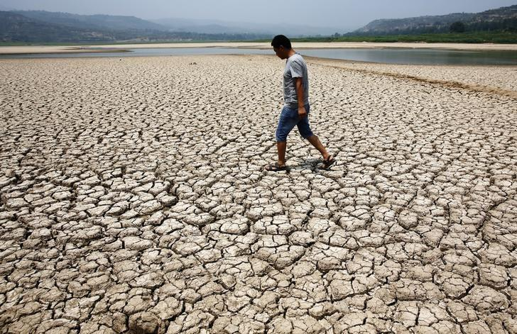 A man walks through the dried-up bed of a reservoir in Sanyuan county, Shaanxi province July 30, 2014. REUTERS/Stringer