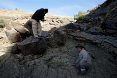 El paleontólogo Sebastián Apesteguía (derecha) mide una huella de más de un metro hecha por un depredador carnívoro hace unos 80 millones de años, una de las más grandes de su tipo que se haya encontrado, en Kinsa Saruska en el sinclinal de Maragua, a unos 60 kilómetros de Sucre , Bolivia, 21 de julio de 2016. Imagen tomada el 21 de julio de 2016. Una huella de 1,2 metros de diámetro de un dinosaurio de la familia de los abelisaurus, uno de los mayores depredadores que pobló Sudamérica en el período Jurásico, fue descubierta en Bolivia, reportaron el martes investigadores. REUTERS/David Mercado