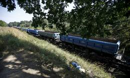 A cargo train travels in an area where a Nazi train is believed to be, in Walbrzych, southwestern Poland August 30, 2015.     REUTERS/Kacper Pempel/File Photo