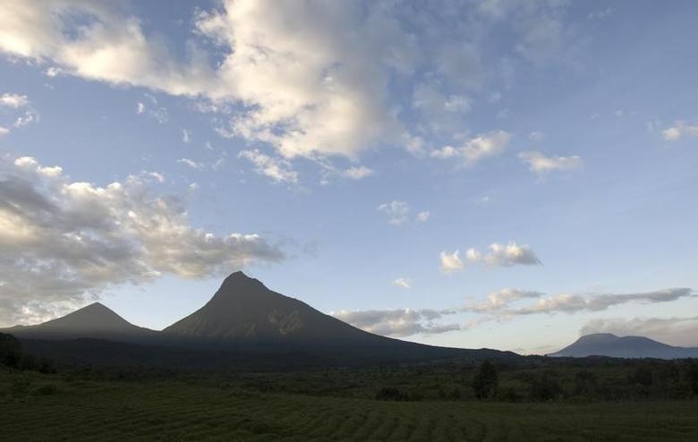 The sun rises over Mount Mikeno (C) in the Virunga National Park, Eastern DRC December 12, 2008. REUTERS/Peter Andrews
