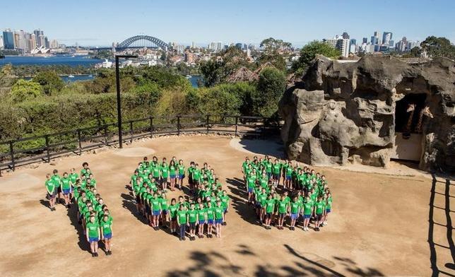 9月15日、オーストラリア東部シドニーにあるタロンガ動物園で100周年記念イベントが行われ、キリン舎では地元の小学生らが100という数字を人文字で作った。代表撮影(2016年 ロイター/Rick Stevens/Pool)