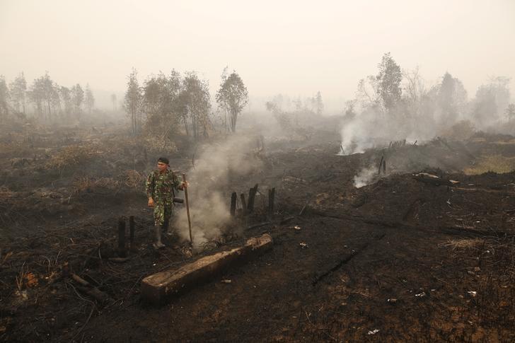 An Indonesian soldier checks on a peat land fire near Palangkaraya, Central Kalimantan, Indonesia October 28, 2015. REUTERS/Darren Whiteside/Files