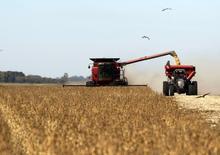 Una cosechadora de granos en un sojal en Chacabuco, Argentina, abr 24, 2013. La actividad económica de Argentina se habría contraído en promedio un 3,1 por ciento interanual en julio, debido a una desaceleración generalizada de la actividad, según un sondeo de Reuters publicado el lunes.       REUTERS/Enrique Marcarian