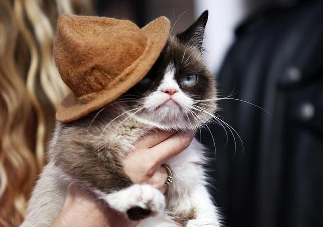 Grumpy cat arrives at the 2014 MTV Movie Awards in Los Angeles, California  April 13, 2014.    REUTERS/Danny Moloshok