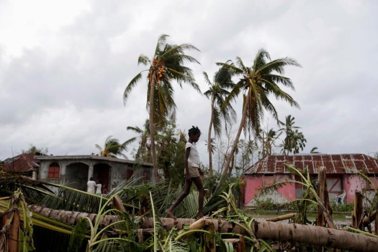 A girl walks on a tree damaged by Hurricane Matthew in Les Cayes, Haiti, October 5, 2016. REUTERS/Andres Martinez Casares