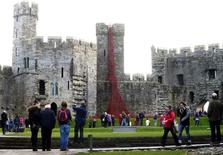 The poppy sculpture 'Weeping Window', a cascade of thousands of handmade ceramic poppies by artist Paul Cummins and designer Tom Piper on display at Caernarfon Castle, Wales, October 17, 2016.  REUTERS/Rebecca Naden