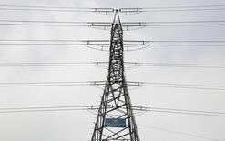 El grupo de transporte de electricidad Red Eléctrica dijo el miércoles que su beneficio bruto de explotación (Ebitda) se incrementó un 2,3 por ciento a 1.113 millones de euros en los primeros nueve meses del año, con unos ingresos estables de 1.445 millones de euros.  En la imagen, el logo de Red Eléctrica en una torre de electricidad en Alcobendas, provincia de Madrid, 9 de marzo de 2016. REUTERS/Sergio Pérez