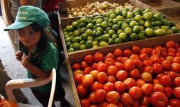 Una niña se para junto a los vegetales en las afueras de Pasto, sur de Colombia,25 Agosto, 2010. Las ventas de los comerciantes minoristas en Colombia mostraron una desaceleración durante octubre, debido a la cautela de los consumidores en medio del deterioro en el panorama económico, reveló el viernes un informe del principal gremio del sector.  REUTERS/Jaime Saldarriaga