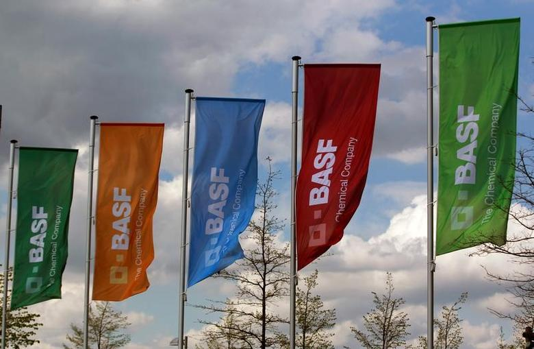 Flags of the German chemical company BASF are pictured in Monheim, Germany April 20, 2012. REUTERS/Ina Fassbender/File Photo