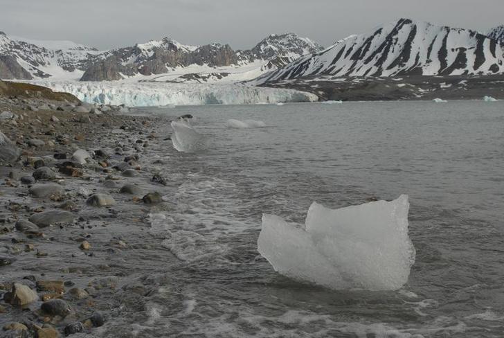 General view of sea ice near the Global Seed Vault in Longyearbyen as seen in this handout photo taken June 24, 2006.  REUTERS/Peter Vermeij/Global Crop Diversity Trust/Handout/Files