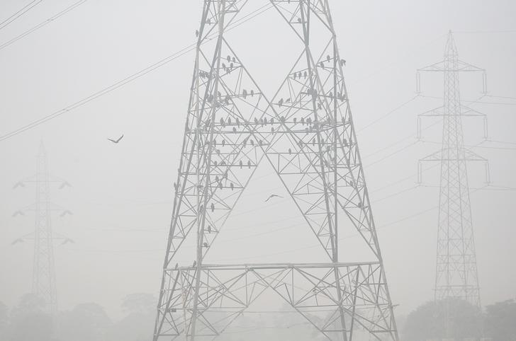 Black kites perch on an electricity pylon amid heavy smog in  Delhi, India November 7, 2016. REUTERS/Cathal McNaughton/Files