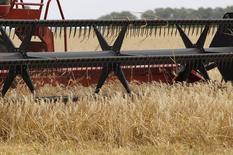 Una foto de archivo de una máquina cosechando trigo en General Belgrano, en la provincia de Buenos Aires. La cosecha argentina de trigo del ciclo 2016/17 superará los 17 millones de toneladas, una cifra que se ubica por encima de lo estimado oficialmente con anterioridad, dijo el ministro local de Agroindustria según un comunicado que la cartera agrícola difundió el sábado. REUTERS/Enrique Marcarian
