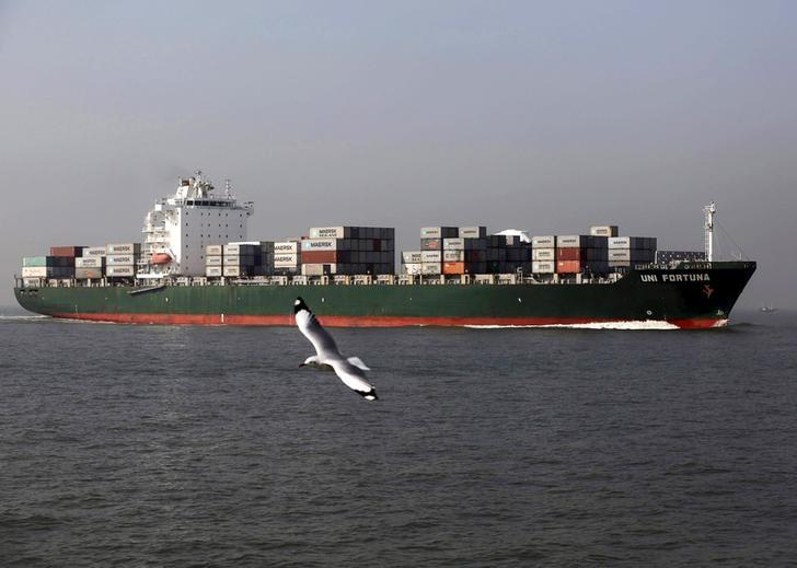 FILE PHOTO -  A seagull flies past a cargo container ship off the coast of Mumbai, India, December 3, 2015. REUTERS/Shailesh Andrade/File Photo