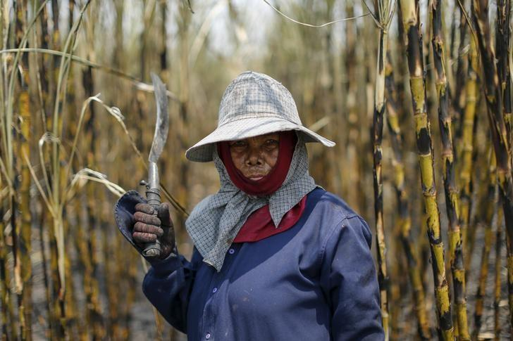 A sugar cane worker poses while working in a field at Pakchong district in Ratchaburi province, Thailand March 22, 2016.  REUTERS/Jorge Silva /Files
