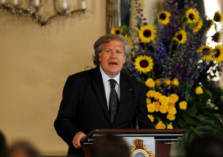 Organization of American States (OAS) Secretary-General Luis Almagro addresses the audience during an official visit to Honduras, in Tegucigalpa, January 17, 2017. REUTERS/Jorge Cabrera
