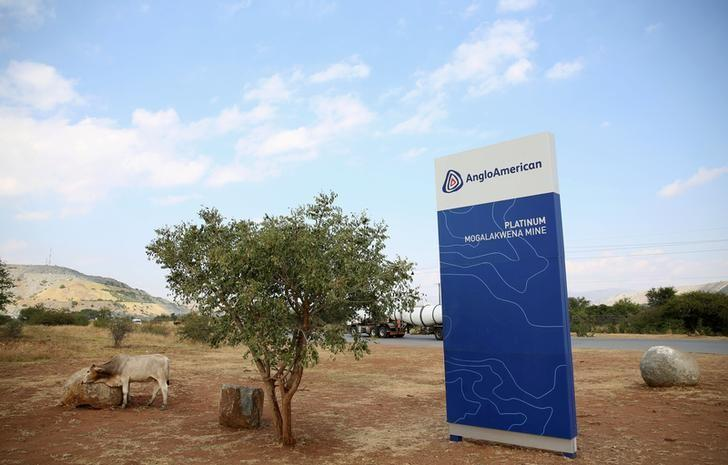 A cow is seen near the AngloAmerican sign board outside the Mogalakwena platinum mine in Mokopane , north-western part of South Africa , Limpopo province May 18, 2016. REUTERS/Siphiwe Sibeko