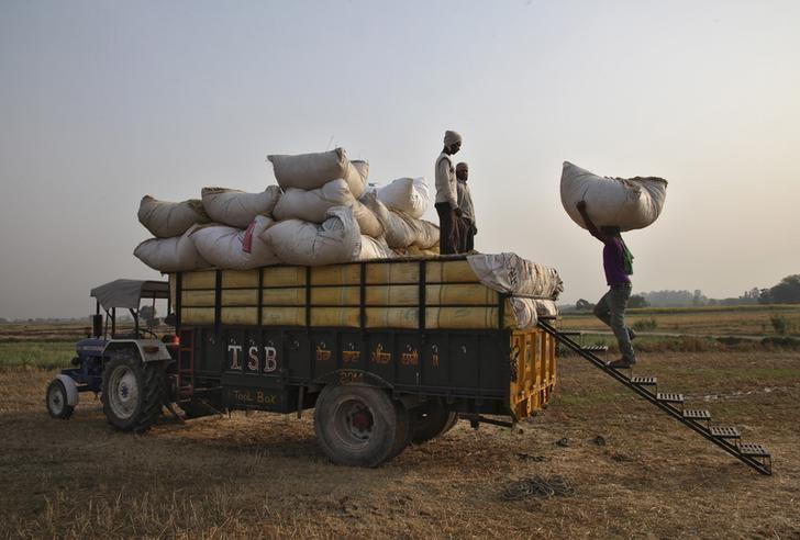 A labourer loads a bundle of wheat husk in a tractor-trolley at a field in Punjab, May 6, 2015. REUTERS/Ajay Verma/Files