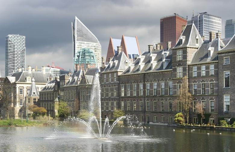 FILE PICTURE: A general view shows the House of Parliament in The Hague April 24, 2012. REUTERS/Paul Vreeker/United Photos