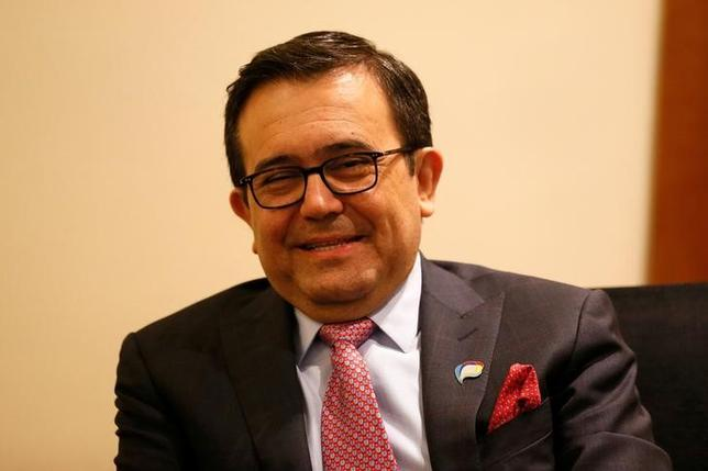 4月18日、メキシコのグアハルド経済相は、環太平洋連携協定(TPP)から米国が離脱した場合でも、合意文書の文言を修正することで、発効は可能との見方を示した。写真はチリで3月撮影(2017年 ロイター/Rodrigo Garrido)