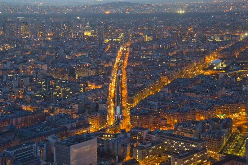 A general view shows the aerial subway and the city rooftops in Paris February 24, 2015. Gonzalo Fuentes