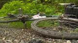Cougar kills U.S. mountain biker, mauls another