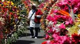 INSIGHT: Flowers march through Colombian streets