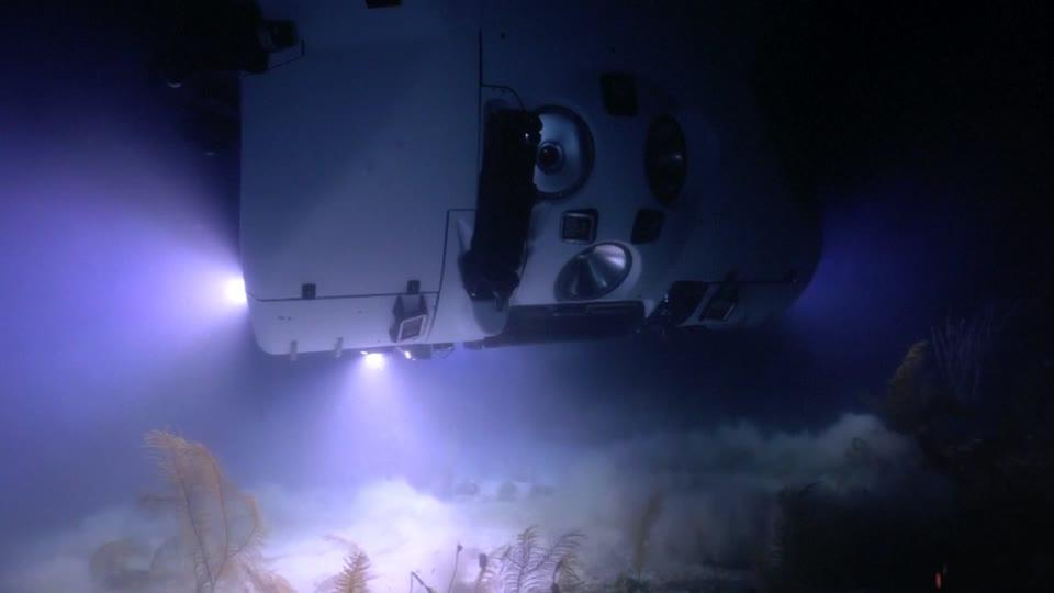 A real undersea adventure