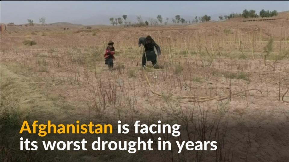 Afghans escape worst drought in years