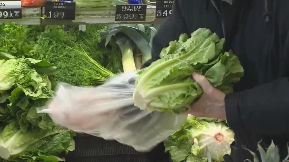 Tainted romaine lettuce traced to California