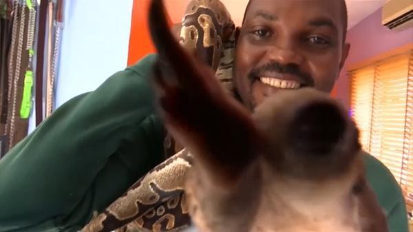 ナイジェリアの「ヘビ男」、野生動物への理解を訴える(字幕・21日)