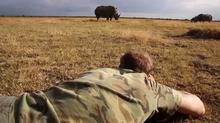 サイの密猟阻止に「人の爪」 スウェーデン写真家「効用は同じ」(字幕・7日)