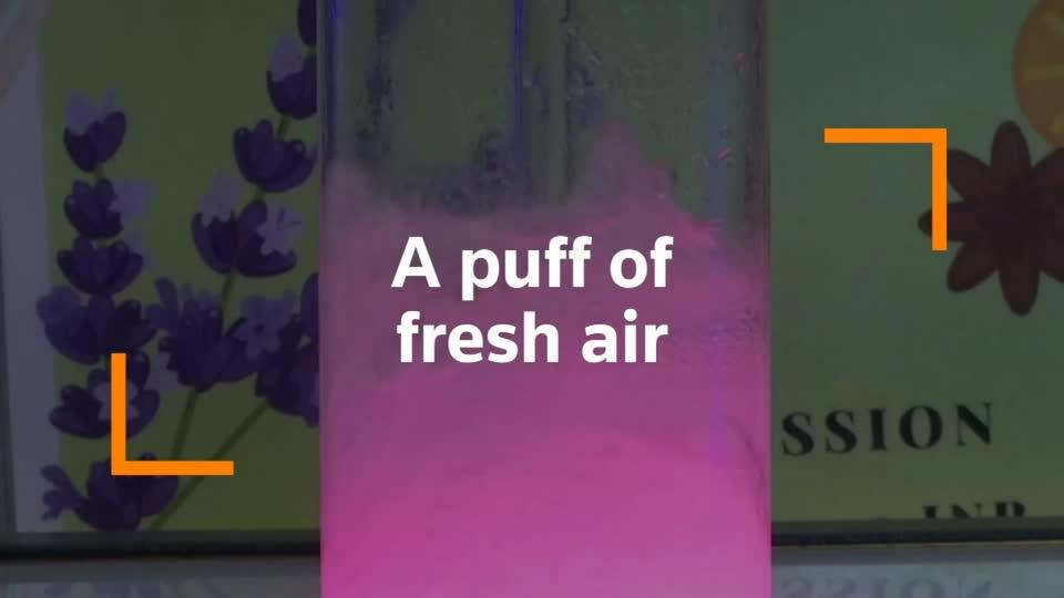 'Oxygen Bar' sells puff of fresh air to pollution-hit Delhi