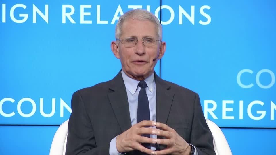 Dr. Fauci calls Diamond Princess infection 'incubator'