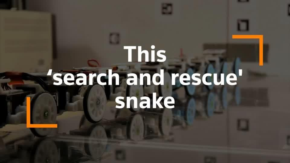 How a robot snake could help save lives