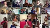 自宅待機でもオーケストラはできる!響け「歓喜の歌」(字幕・28日)