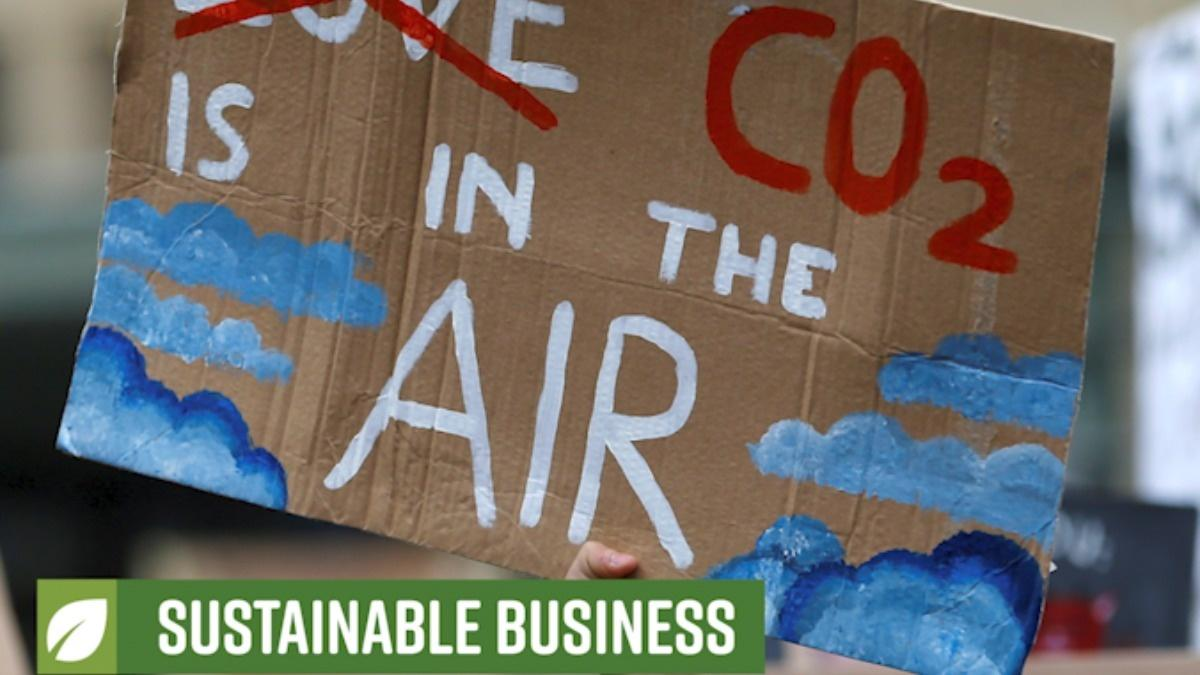 Sustainable Business: Climate in the courtroom