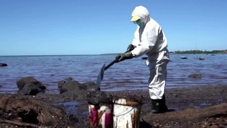 Counting the environmental cost of the Mauritius oil spill