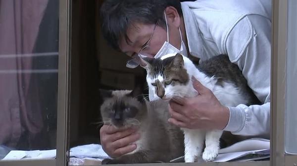帰宅困難地域で1人とどまり、猫を世話する男性 その思いとは(字幕・4日)
