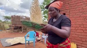 Kenyan startup Pula offers lifeline to African farmers