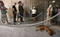 <p>Un cane dorme accanto alla coda dei visitatori agli scavi di Pompei. REUTERS/Ciro De Luca</p>