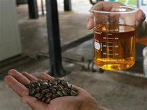 <p>Un esempio di biodiesel prodotto dai semi del ricino. REUTERS/Jamil Bittar</p>