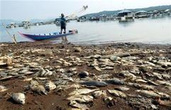 <p>Foto de archivo de un hombre indonesio pescando en el lago Cirata donde miles de peces fallecieron a consecuencia de un cambio en las condiciones climáticas, 9 dic 2004. Los diputados de la Unión Europea respaldaron el martes la adopción de más medidas a nivel nacional para combatir el cambio climático, en una decisión que se trasladará a las negociaciones europeas. REUTERS/Crack Palinggi</p>
