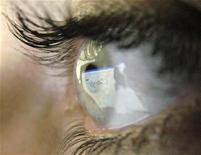 <p>Una pagina di Google riflessa nell'occhio di una ragazza. REUTERS/Darren Staples/Files</p>