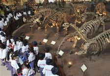 <p>Turisti ad una mostra di fossili di dinosauro in Cina. REUTERS/China Daily</p>