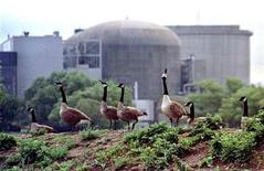 <p>Canada geese stand near the troubled Ontario Hydro Pickering nuclear power station August 13.</p>